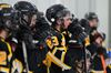 Aurora Tigers fall in OJHL Championship