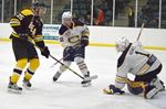 Canadians shut out Bears