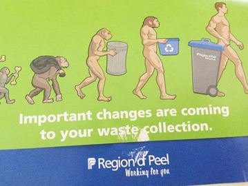 Evolution of trash