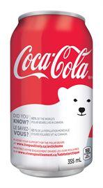 Coca-Cola Arctic Home Installation