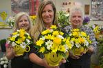 Smile! Bouquets donated to cheer Innisfil, Barrie residents
