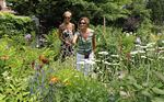 Burlington Horticultural Society's annual garden tour