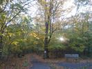Enjoy the fall colours at Cataraqui Creek this weekend