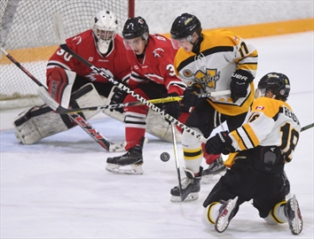 Hawks beat siskins 3 2 in overtime in opener for Door 2 door pizza hayes