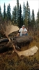 Yukon premier shot meat at premier's dinner-Image1