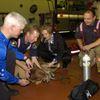 Pet Oxygen First Aid kits