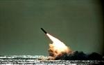 Missile failure off Florida? British leader won't say-Image1