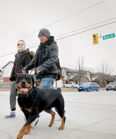 Barrie paves the way to revitalize Essa Road