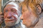 NEANDERTHAL DNA