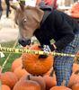 PHOTOS: Pumpkinfest at Gourley Park