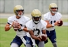 Georgia Tech opens spring practice looking to find a new QB-Image1