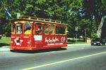 TROLLEY ON THE STREETS OF BRACEBRIDGE
