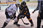 Barrie Colts fall to Owen Sound Attack