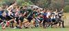 PHOTOS: MacNab cross-country meet