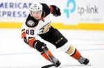 Sgarbossa recalled by Ducks