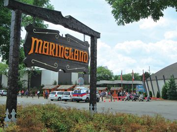 Website issues retraction of Marineland story