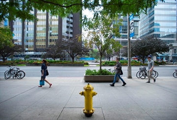 A fire hydrant on University Avenue in downtown Toronto is the cause of many parking infractions in the city. Surrey Fire Chief Len Garis suggests that shrinking the no-stopping zone around hydrants could create hundreds of new parking spots in congested cities.