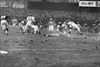 Eagles: 60-minute man Chuck Bednarik has died at 89-Image1