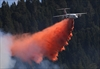 Lumber town takes stock after wind-driven wildfire-Image1