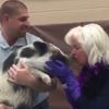 Barrie principal kisses pig for Terry Fox Run fundraiser
