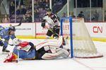 ECHL Brampton Beast v Toledo Walleye