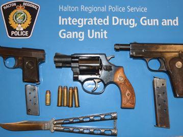 Guns seized from Milton home