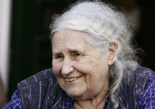 group minds doris lessing essay Comparitive critique of doris lessing's article group minds and in her essay titled group minds, doris lessing claims that as a society we have enough.