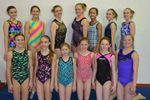 Alliston gymnasts qualify for provincial championships