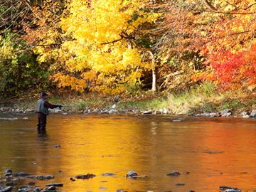 Fishing in the Credit River