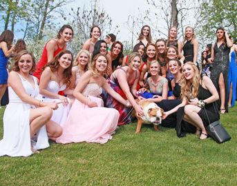 WDHS students celebrate at prom